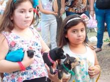 XV Muestra de mascotas en el Parque Mitre