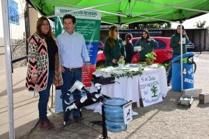 Múltiples actividades por el Día del Medio Ambiente