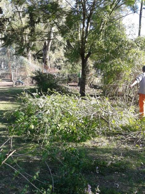 Parques y Paseos con tareas de reparación y limpieza del Mitá Rorí