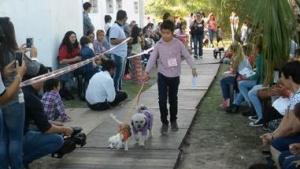 Exitosa Muestra de Mascotas