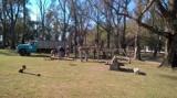 Trabajos en el Parque Mitre